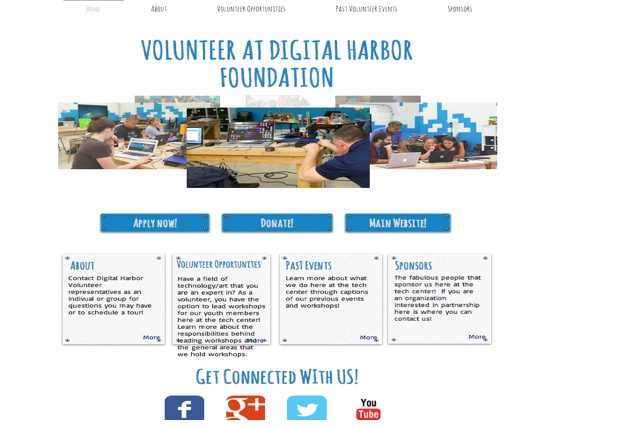 DHF volunteer website