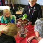 Young Makers - Aquaponics