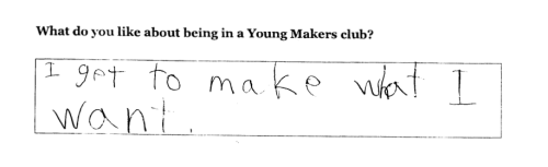 Young Makers survey snapshot
