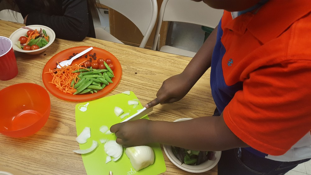 Fun with Food Food Science & Cooking 03-24-2017
